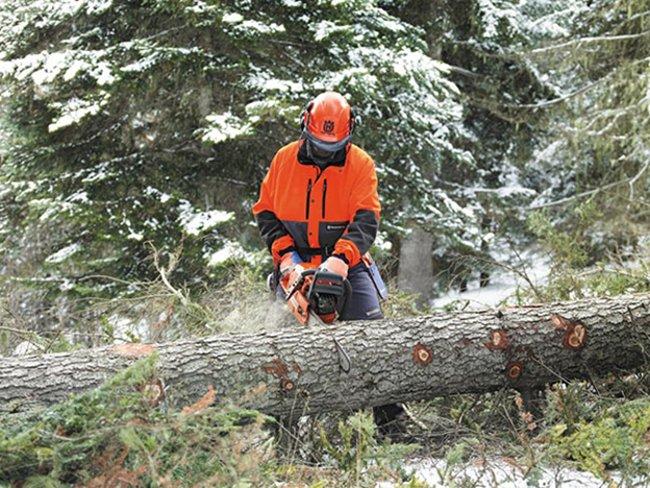 распиливание дерева бензопилой