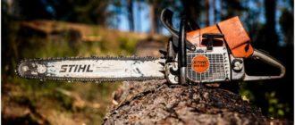 рабочая пила штиль 461 в лесу